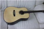 solid acoustic guitar